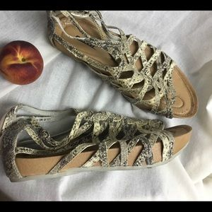 Earth sandals size says 37 but fit like 39